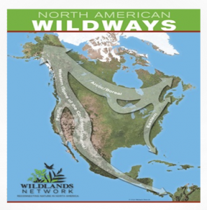 North_America_Wildways